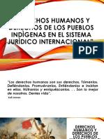Dd.hh. y Dº de Los Pueblos Indigenas en El Sistema Juridico Internacional 20-07-17