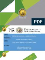 La Constitucion en El Peru