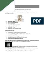 BAB 4 Anatomi Tubuh Manusia_virus_bakteri