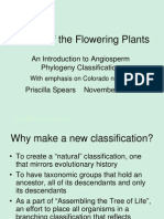 A Tour of the Flowering Plants - An Introduction to Angiosperm Phylogeny November 2007