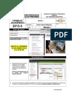 Trabajo Académico 2013-3 m1