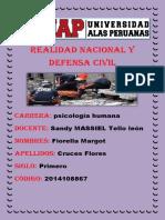 Realidad Nacional y Defensa Civil