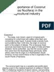 The Importance of Coconut (Cocos Nucifera)
