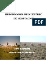 Medicion de La Vegetacion1