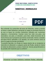Brazo Presentacion PPT