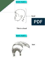 Body Parts (1)