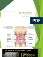 El Abdomen Anatomia, Semiiologia