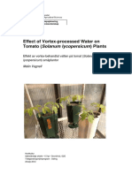 Effects of Imploded Water on Tomatoe Plants