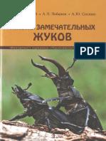 жизнь жуков конв