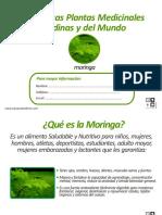 boletin_moringa.pdf