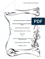 INFA- marita - informe final.docx