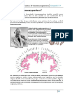 6-CRANEOPUNTURA.pdf