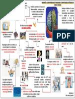 INFOGRAFÍA. INCOMPATIBILIDAD DE PARADIGMAS Y COMPATIBILIDAD DE TECNICAS.pptx [Autoguardado].pdf