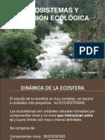 Ecosistemas y Sucesión Ecológica (C-9)