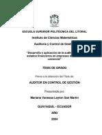 AUDITORIA EMPRESAS COMERCIALES.pdf