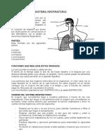 SISTEMA RESPIRATORIO.docxgg.docx