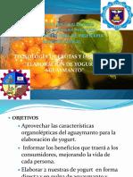 Elaboracion de Yogurt de Aguaymanto (Final)