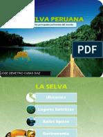 Selva Demetrio