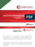Ejecucion Presupuestal Del Ingresos y Gastos (1)