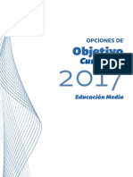 Obj Curriculares Educacion Media (4)