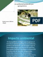 impactoagroquimicos-090929104900-phpapp02.pptx