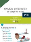 c2 Estrutura e Composic3a7c3a3o Do Corpo Humano