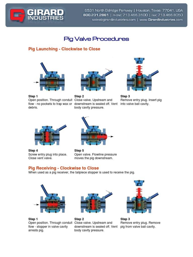 Pig_Valve_Procedures pdf