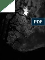 Dark Night by Rad Wulf-d5xx0pd