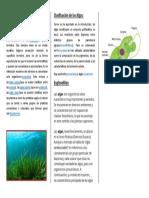definición algas