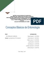 Conceptos Basicos de Entomologia