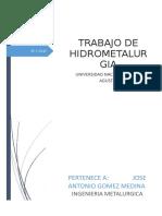 Trabajo de Hidrometalurgia.docx