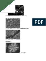 nanomaterial.docx