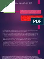 Características y Estructura Del Revista