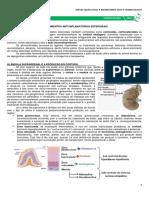 06 - Medicamentos Antiinflamatórios Esteroidais