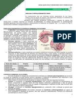 12 - Insulina e Hipoglicemiantes Orais