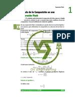 Composicion en Una Separacion Flash.pdf (2)