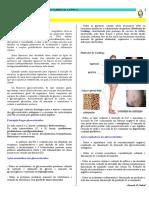 cap 4 - GLICOCORTICOIDES.pdf