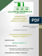 Diagnostico Organizacional Trabajo Final Grasas El Puerto C.A
