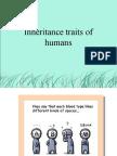 Inheritance Traits of Humans 2