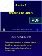 Changing the Culture - Copy