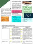 Acrilamida bread-PT-final.pdf