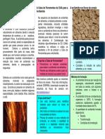 Acrilamida cereals-PT-final.pdf