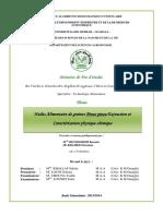 BENSEGHIER_KHAMED.pdf