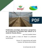 8. Perspectivas de La Produccion de Hortalizas Bajo Cubierta en Tlaxcala (Castellon)