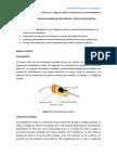 Practica Redes Guia 1 y 2