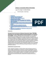 Curso de Anestesia y Analgesia por Acupuntura ( Español) Libro - ( Ph. D. Sergio A. R. Gutiérrez).pdf