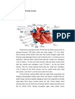 LP Anatomi Dan Fisiologi Jantung