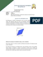 DETERMINANTE.docx