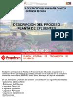 descripcion del proceso de plantas de efluentes.ppt