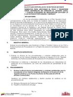 Programa Auditoria Act. 014-16